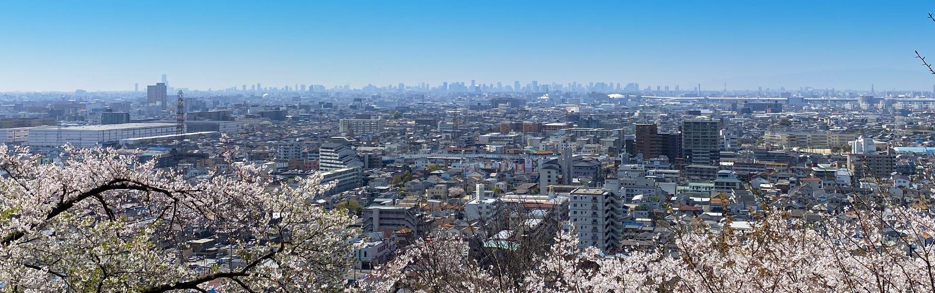 大東市を一望する写真